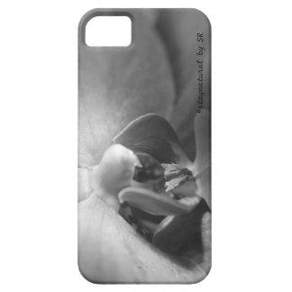 caso #staynatural iPhone 5 fundas