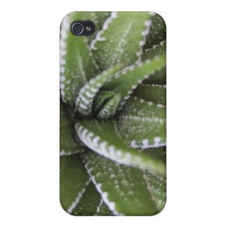 Caso suculento de punta de la serie 4 de Iphone iPhone 4 Carcasas