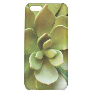 Caso suculento del iPhone 5 de la planta