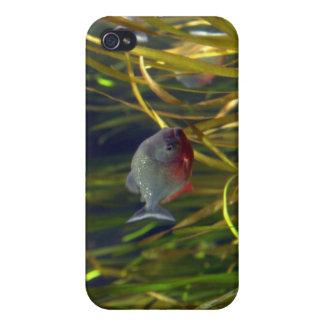 Caso suramericano del iPhone de los pescados de la iPhone 4 Carcasas