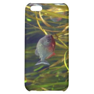 Caso suramericano del iPhone de los pescados de la