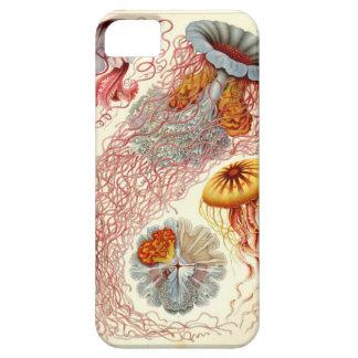 Caso temático del iPhone 5 de las medusas del vint iPhone 5 Carcasas