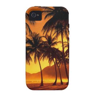 Caso tropical de los palmtrees de la puesta del so vibe iPhone 4 carcasa
