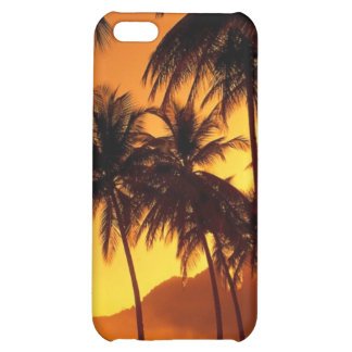 Caso tropical de los palmtrees de la puesta del so