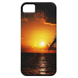 Caso tropical del iPhone 5 de la puesta del sol iPhone 5 Carcasas