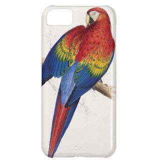 Caso tropical del iPhone 5 del loro