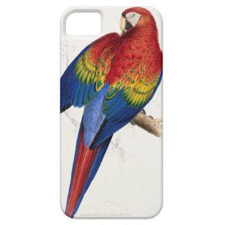 Caso tropical del iPhone 5 del loro iPhone 5 Case-Mate Cárcasas