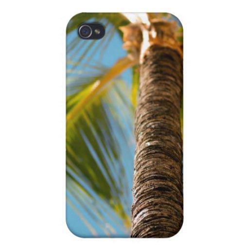Caso tropical del iPhone de la palmera iPhone 4/4S Fundas