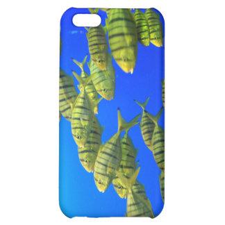 Caso tropical del iPhone de los pescados