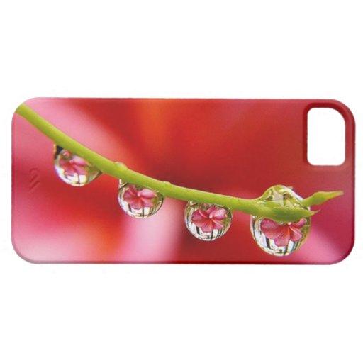 Caso único del iPhone 5/5s de la fotografía del Funda Para iPhone 5 Barely There