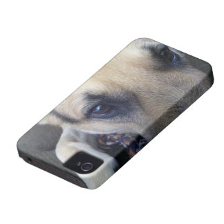 Caso universal de Barely There del iPhone 4 de la  iPhone 4 Case-Mate Carcasa