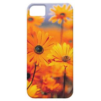 Caso universal de Iphone 5 florales iPhone 5 Funda
