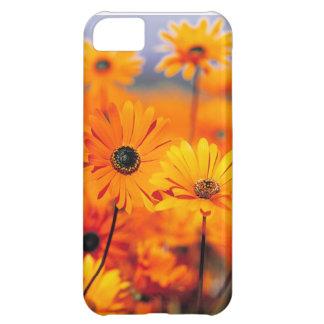 Caso universal de Iphone 5 florales Funda Para iPhone 5C