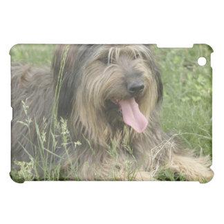Casos barbudos del iPad del perro del collie