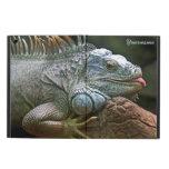 Casos de la iguana