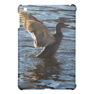 Casos del iPad del pato del pato silvestre