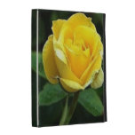 """casos en folio """"rosa amarillo """" del iPad"""