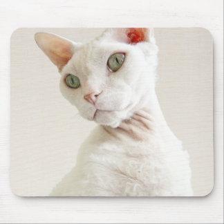 Casper Devon Rex Cat biege mousepad