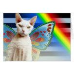 Casper Rainbow fairy   Devon Rex Cat Birthday Card