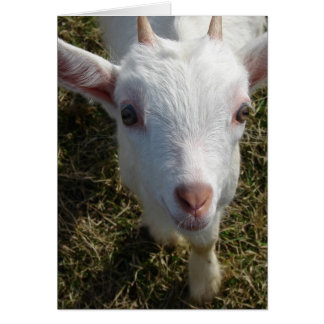 Casper the Friendly Goat Card