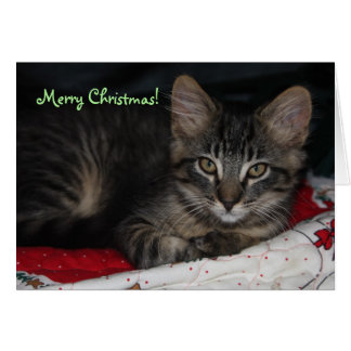 Caspian Merry Christmas Card