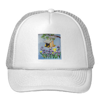 Casquillo amarillo del pinzón gorras