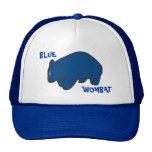 Casquillo azul de Wombat Gorra