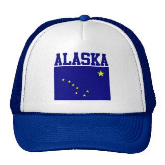 Casquillo de la bandera del estado de Alaska Gorros