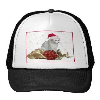 Casquillo de la bola del gato del navidad gorra