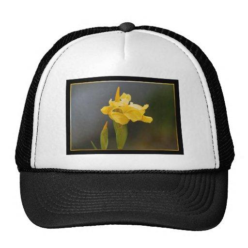 Casquillo de la flor del iris gorros