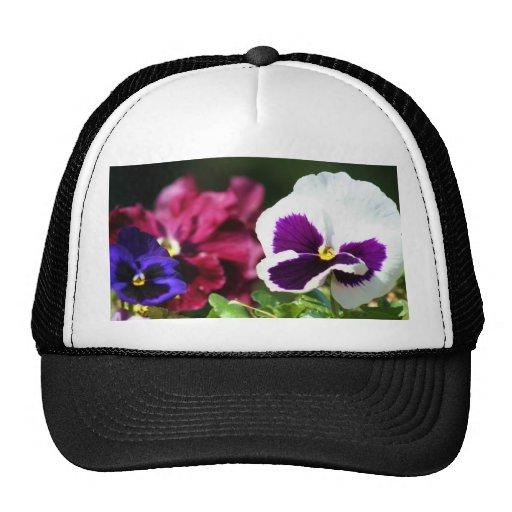 Casquillo de la flor del pensamiento gorras de camionero