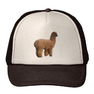 Casquillo de la magia de la alpaca gorro de camionero