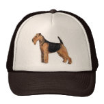Casquillo de Terrier galés Gorros