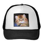 Casquillo del gatito del Tabby Gorras