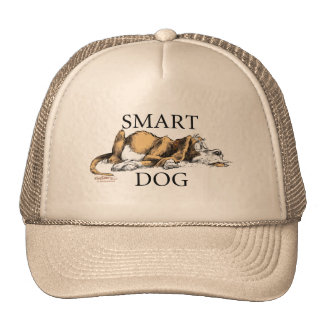 Casquillo elegante del perro gorro de camionero