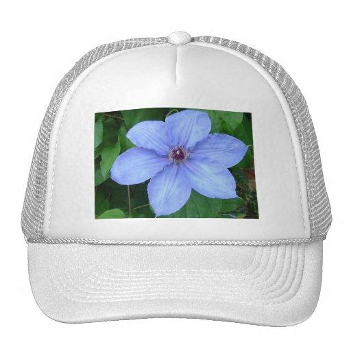Casquillo floral azul gorros