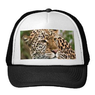 Casquillo manchado del leopardo gorro de camionero