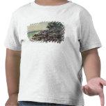Casquillo Martin, 1884 Camiseta