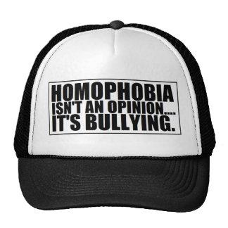 ¡Casquillo que tiraniza del Anti-Gay! Gorra