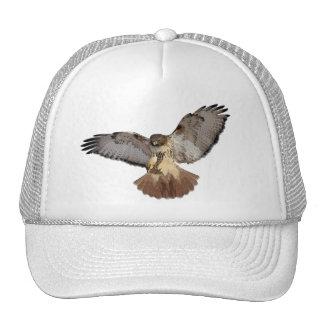 casquillo Rojo-atado del halcón Gorra