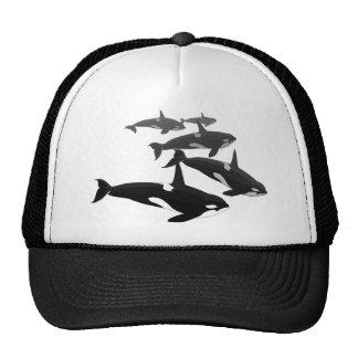 Casquillos de los gorras de la orca de la gorra de