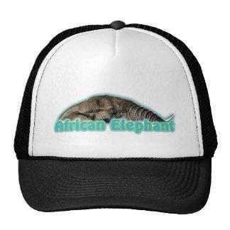 Casquillos máximos de los gorras del safari de la