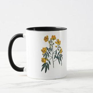 Cassia Corymbosa Mug