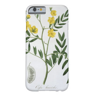 Cassia from 'Phytographie Medicale' by Joseph Roqu Barely There iPhone 6 Case