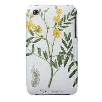 Cassia from 'Phytographie Medicale' by Joseph Roqu Case-Mate iPhone 3 Case
