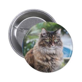 Cassie el botón del gato pin redondo de 2 pulgadas