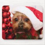 Cassie - Yorkshire Terrier - Scharr Alfombrillas De Ratones