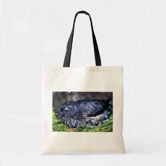 Cassins Auklet Canvas Bag