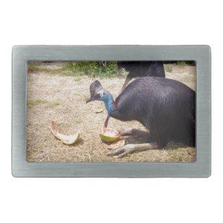 Cassowary_Eating_Melons,_ Rectangular Belt Buckle