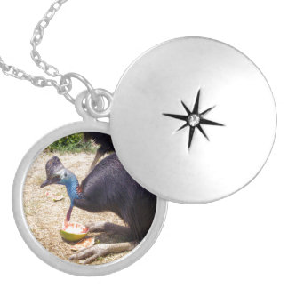 Cassowary_Eating_Melons,_Silver_Locket_Necklace. Silver Plated Necklace
